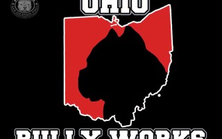 ohiobullyworks_logodesign