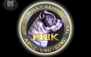 rbk_kennel_logo